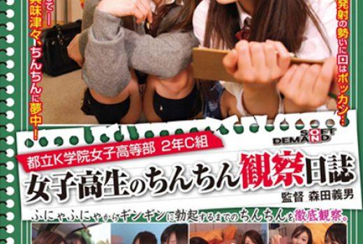 都立K学院女子高等部 2年C組 女子高生のちんちん観察日誌